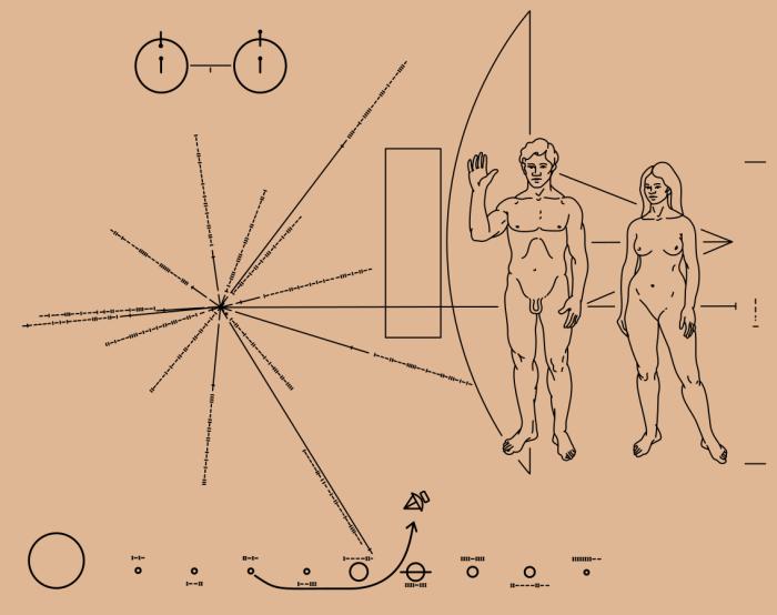 Ilustração da Placa Pioneira